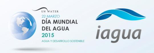 día mundial agua