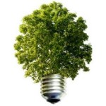 empresa verde foco